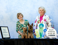 stca obedience wins day 1